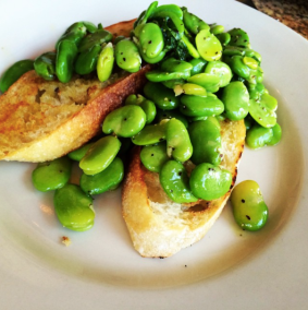 fava beans at enoteca songo
